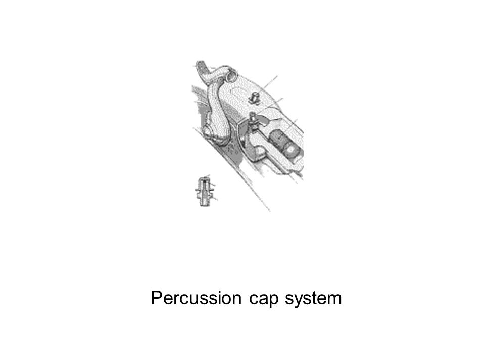 Percussion cap system