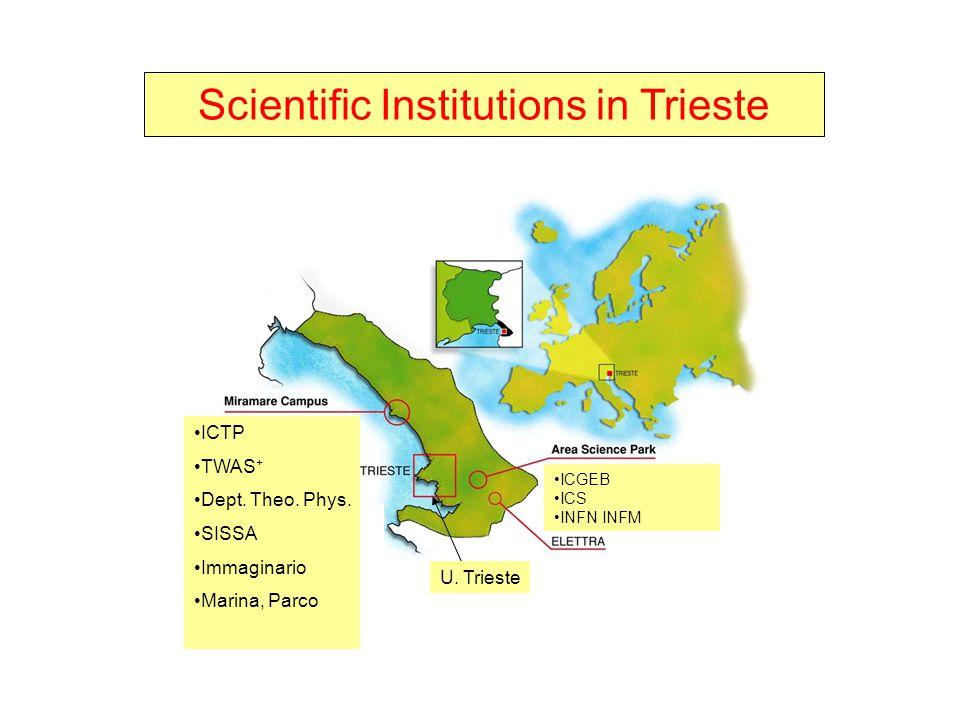 ICTP TWAS + Dept. Theo. Phys. SISSA Immaginario Marina, Parco ICGEB ICS INFN INFM U. Trieste Scientific Institutions in Trieste