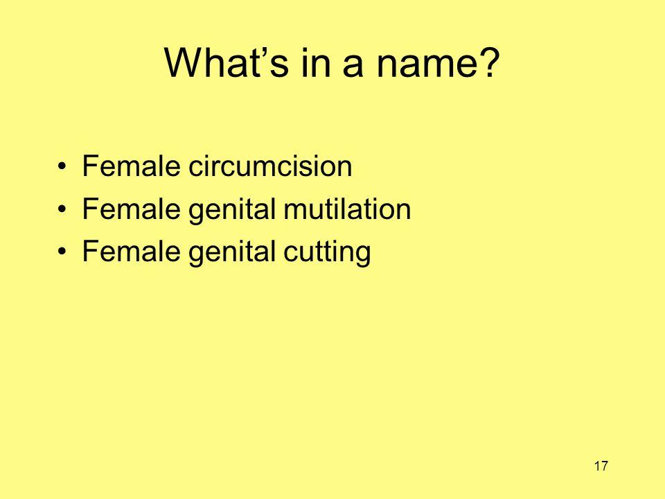 17 What's in a name Female circumcision Female genital mutilation Female genital cutting