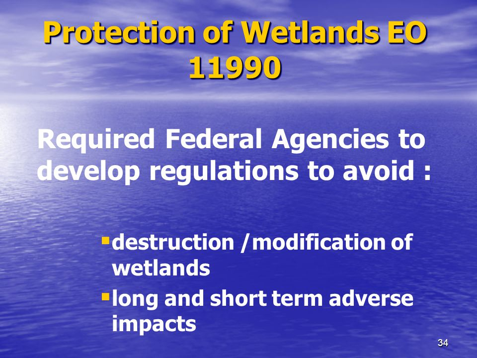 33 Wetlands Protection