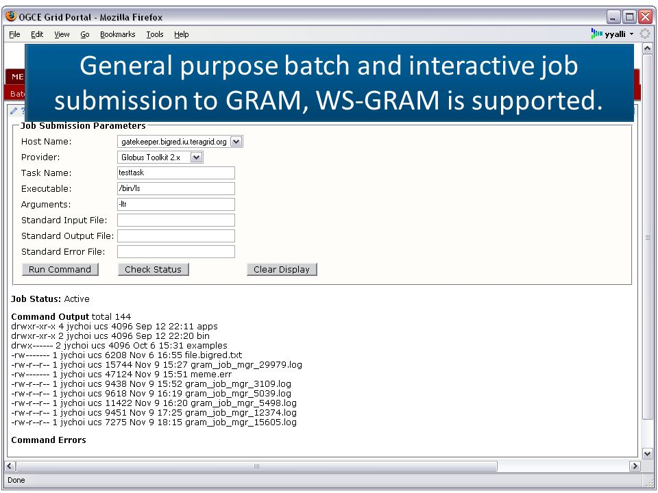 General purpose batch and interactive job submission to GRAM, WS-GRAM is supported.