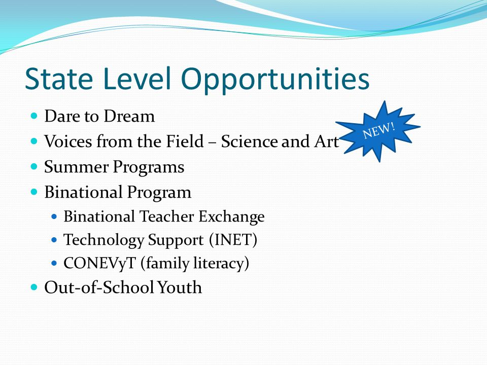 NEW! State Level Opportunities Dare to Dream Voices from the Field – Science and Art Summer Programs Binational Program Binational Teacher Exchange Te