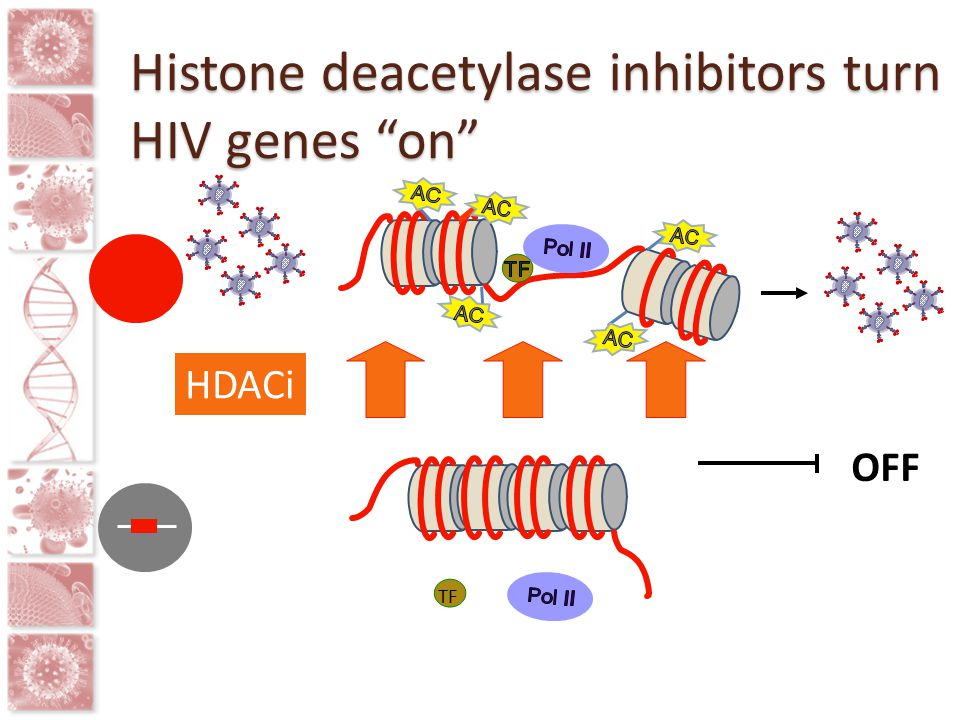 "TF OFF HDACi Histone deacetylase inhibitors turn HIV genes ""on"""