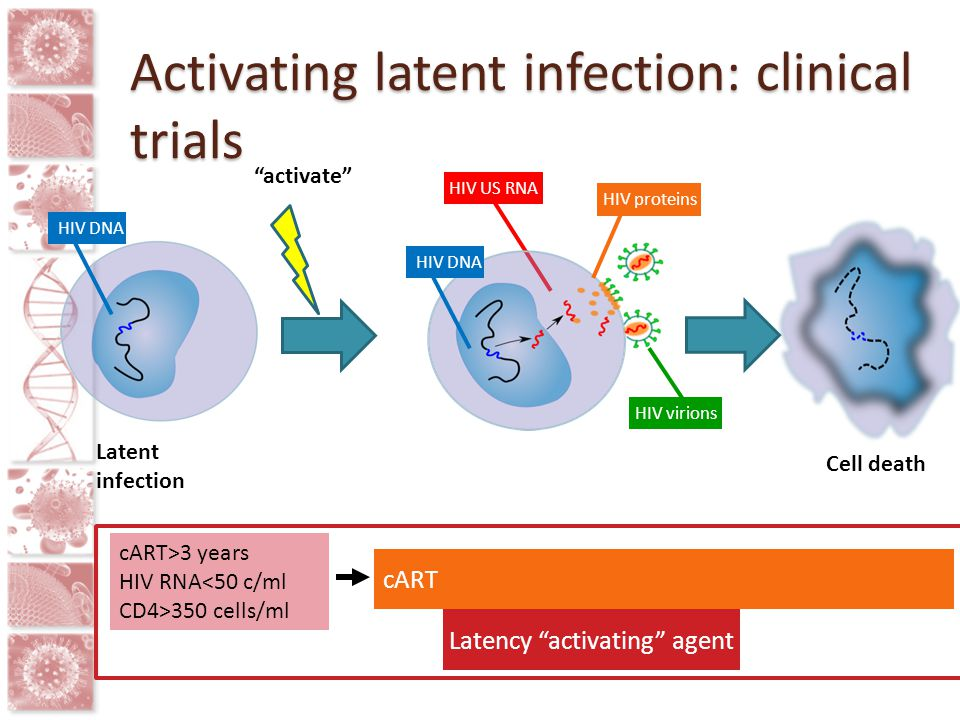 "HIV DNA HIV US RNA HIV DNA HIV proteins HIV virions Latent infection ""activate"" Cell death cART Latency ""activating"" agent cART>3 years HIV RNA<50 c/m"