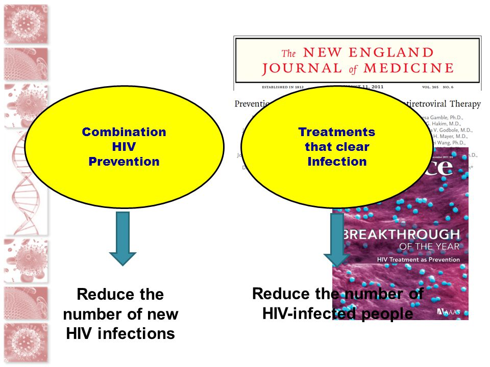 Where can HIV eradication approaches be tested? HUMANIZED MICE