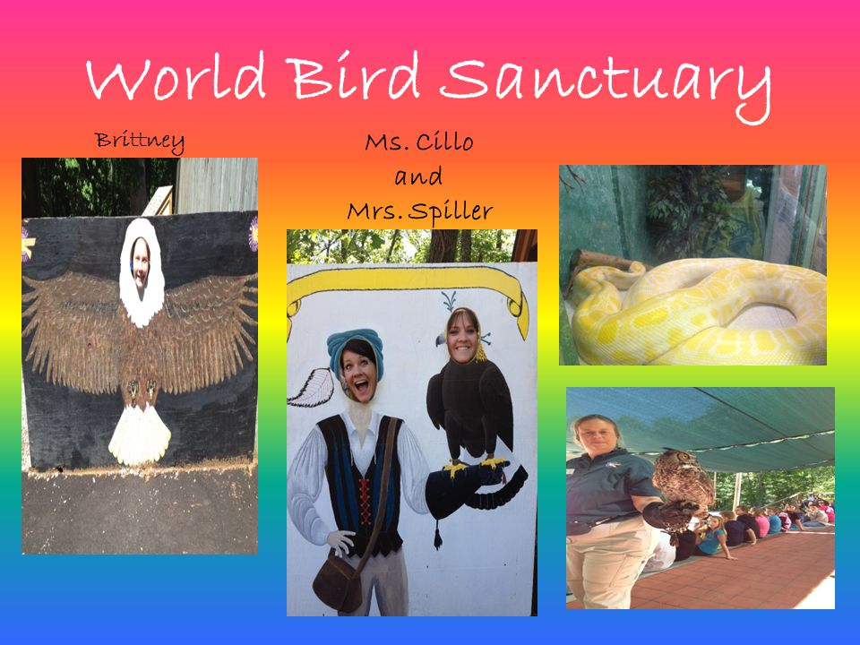 World Bird Sanctuary Ms. Cillo and Mrs. Spiller Brittney