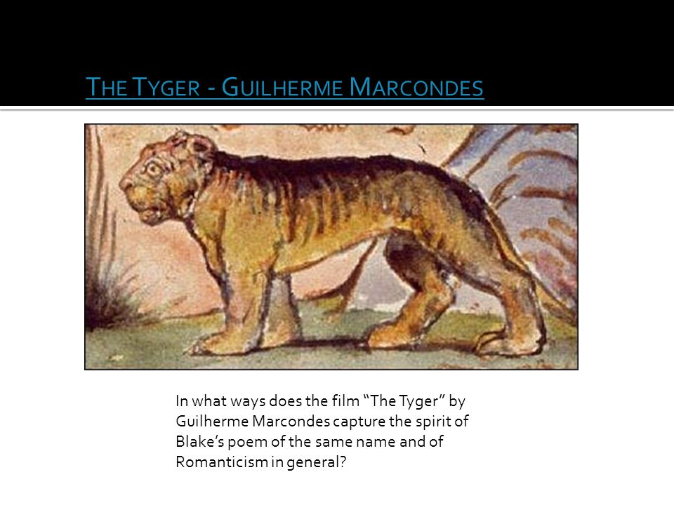 "T HE T YGER - G UILHERME M ARCONDES In what ways does the film ""The Tyger"" by Guilherme Marcondes capture the spirit of Blake's poem of the same name"