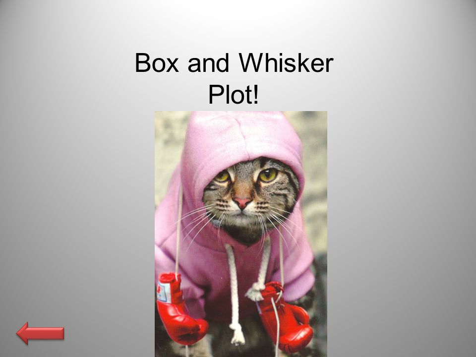 Box and Whisker Plot!