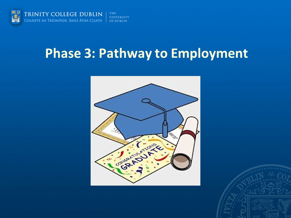 Phase 3: Pathway to Employment