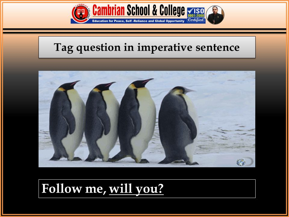 Tag question in imperative sentence Follow me, will you?