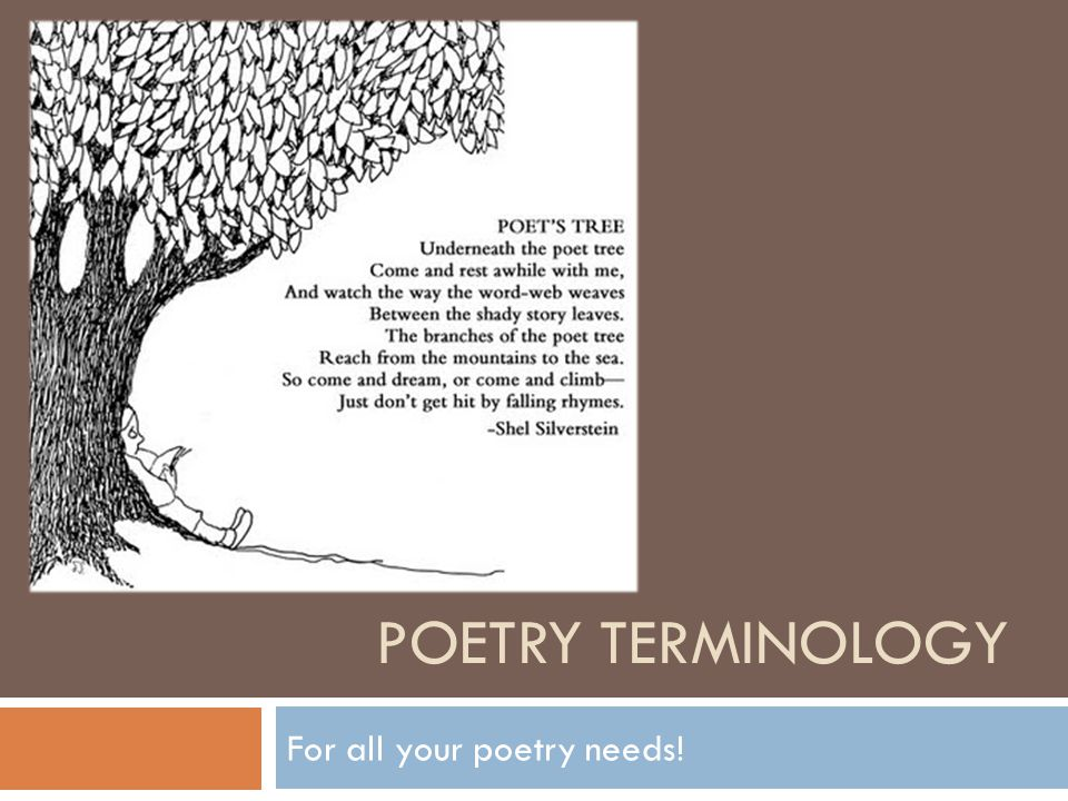 POETRY TERMINOLOGY For all your poetry needs!