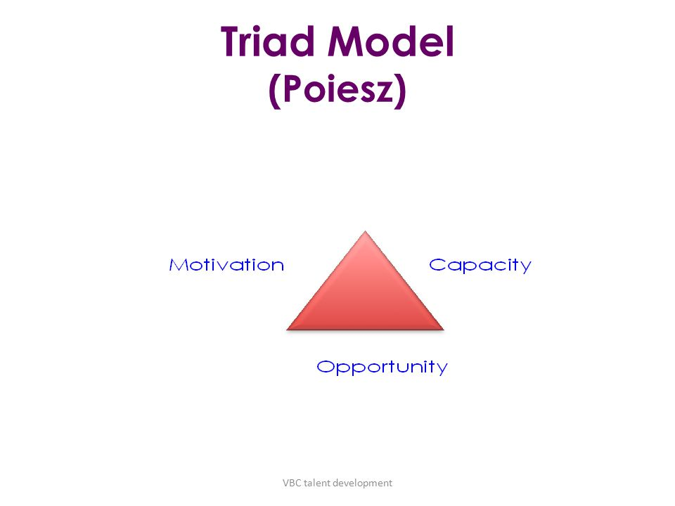 Triad Model (Poiesz) VBC talent development