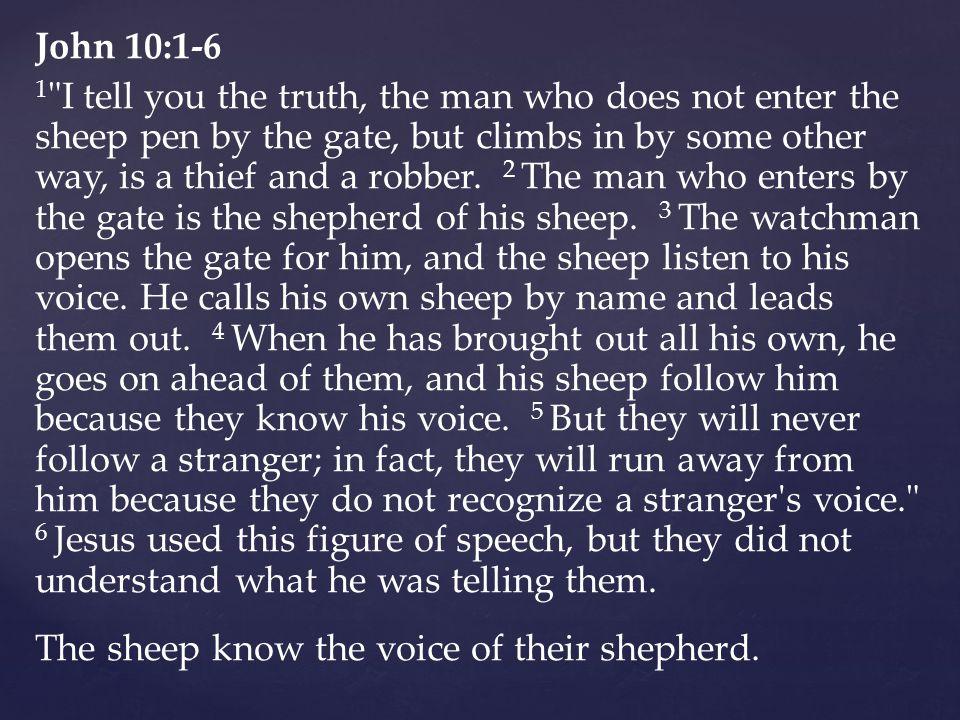 John 10:1-6 1