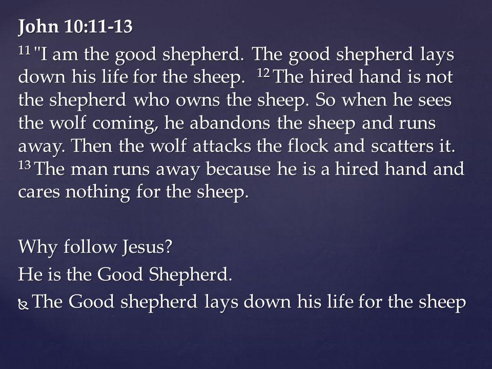 John 10:11-13 11