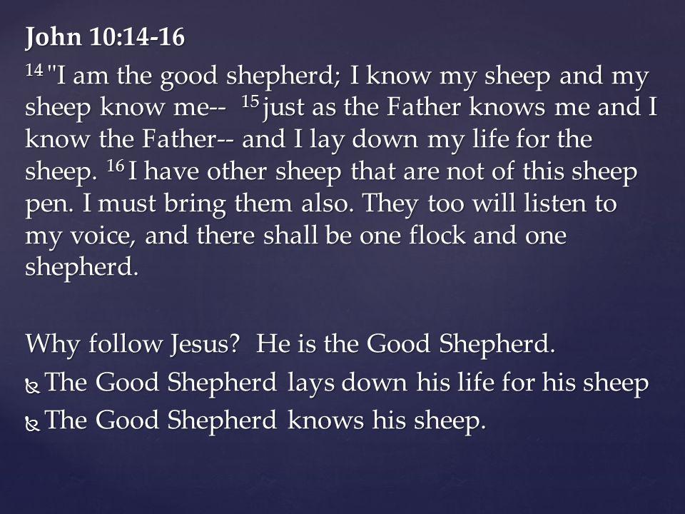 John 10:14-16 14