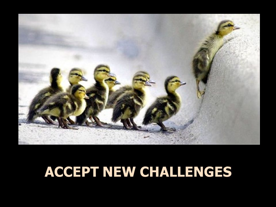 ACCEPT NEW CHALLENGES