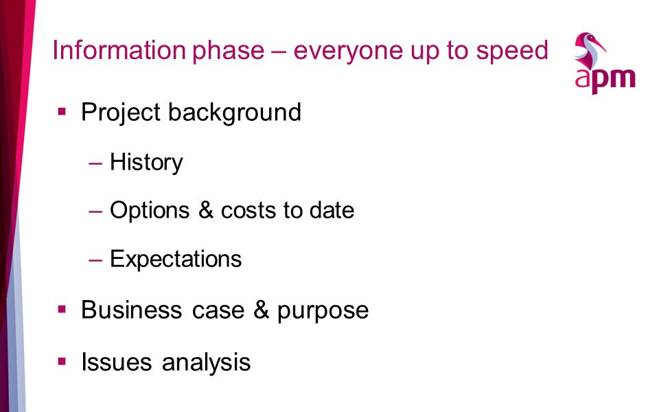 Information phase – everyone up to speed  Project background –History –Options & costs to date –Expectations  Business case & purpose  Issues analysis