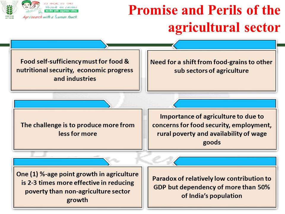 Promise and Perils of the agricultural sector Food self-sufficiency must for food & nutritional security, economic progress and industries The challen