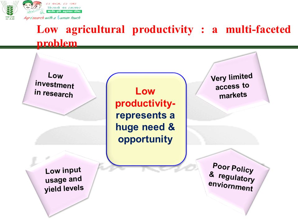 Low productivity- represents a huge need & opportunity Low investment in research Very limited access to markets Poor Policy & regulatory enviornment