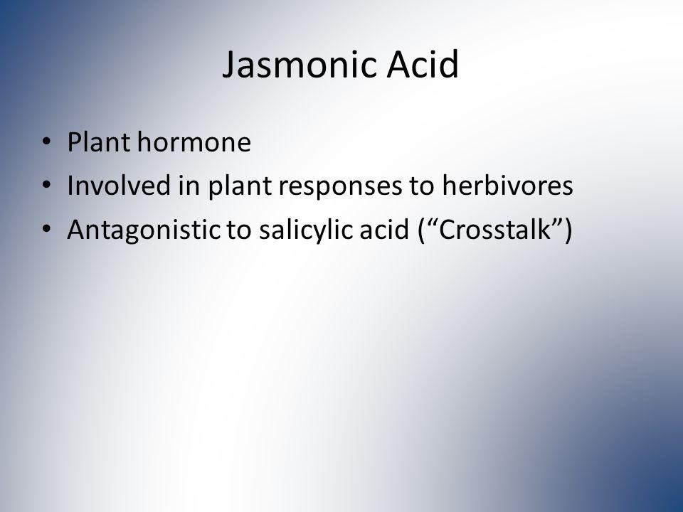 Jasmonic Acid Plant hormone Involved in plant responses to herbivores Antagonistic to salicylic acid ( Crosstalk )