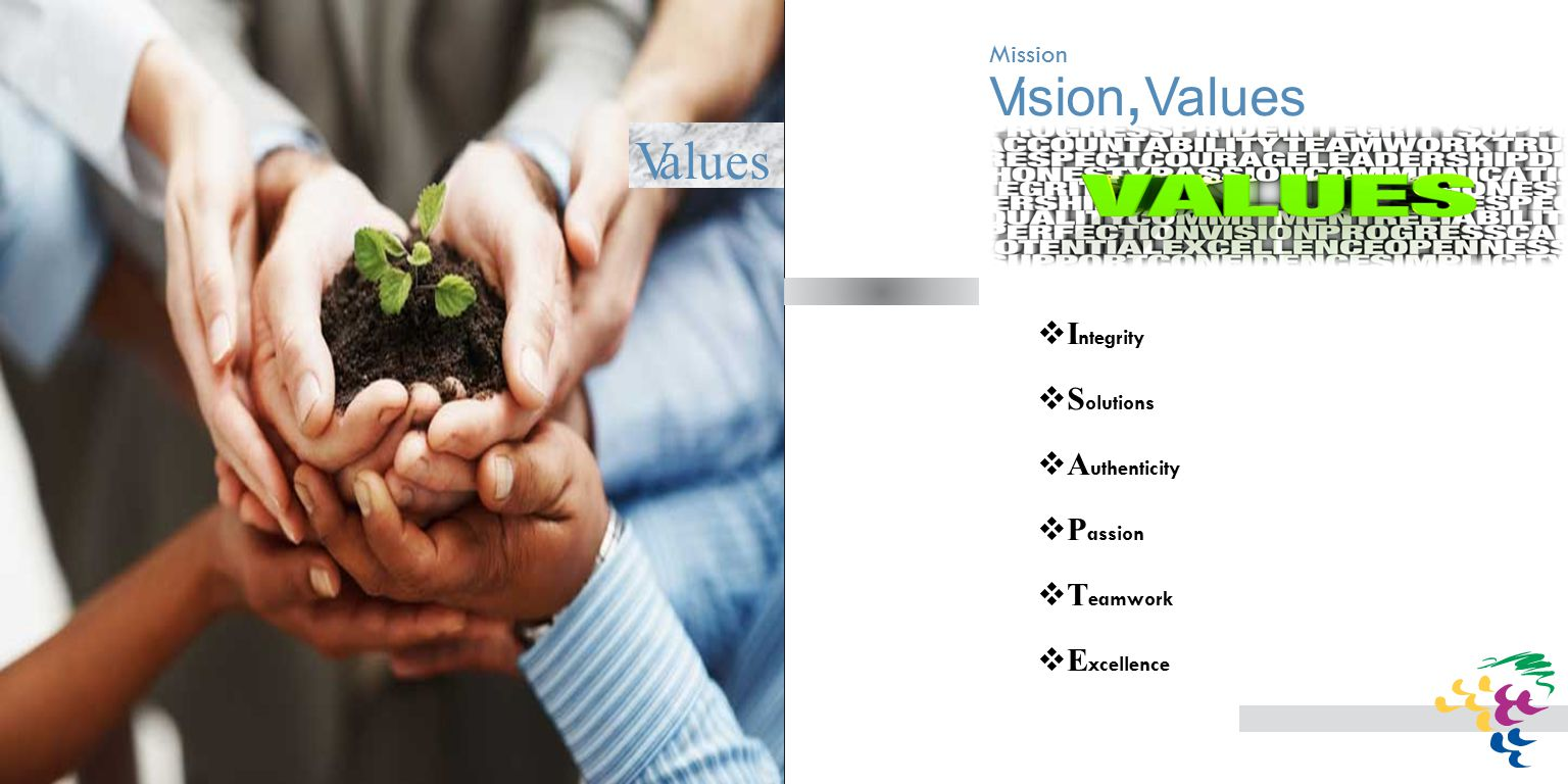 Vision, Values  I ntegrity  S olutions  A uthenticity  P assion  T eamwork  E xcellence Values
