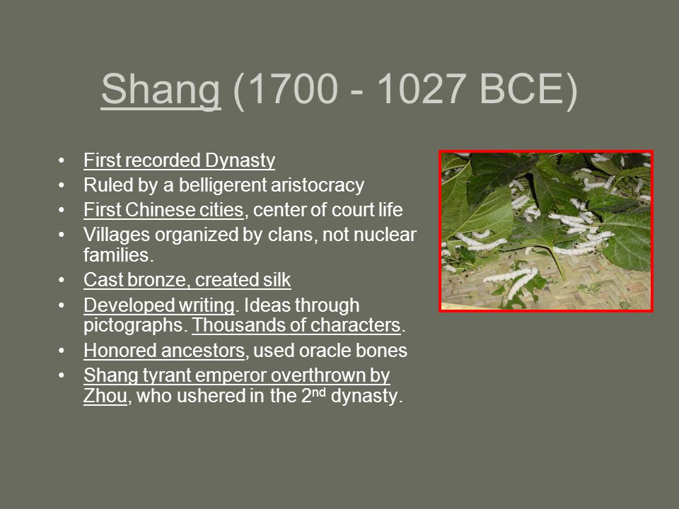 Shang (1700 - 1027 BCE) First recorded Dynasty Ruled by a belligerent aristocracy First Chinese cities, center of court life Villages organized by clans, not nuclear families.