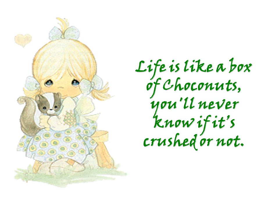 Life is like a box of Choconuts, you ll never know if it's crushed or not.