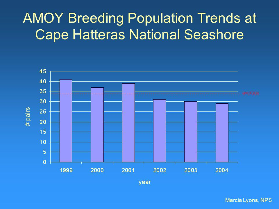 AMOY Breeding Population Trends at Cape Hatteras National Seashore Marcia Lyons, NPS year # pairs average