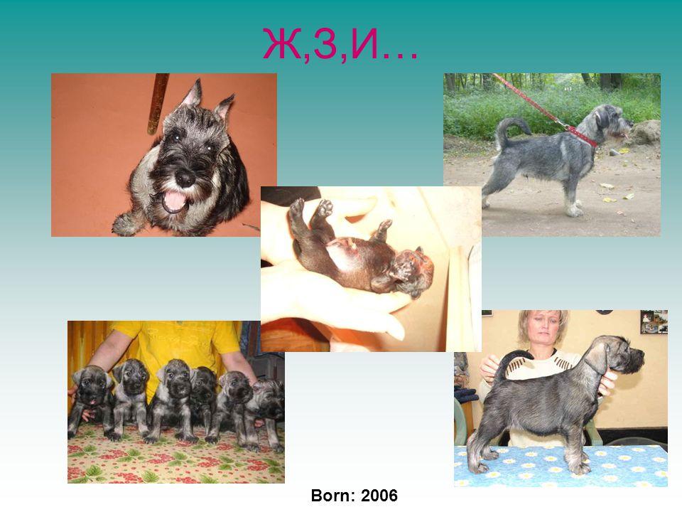 Ж,З,И… Born: 2006