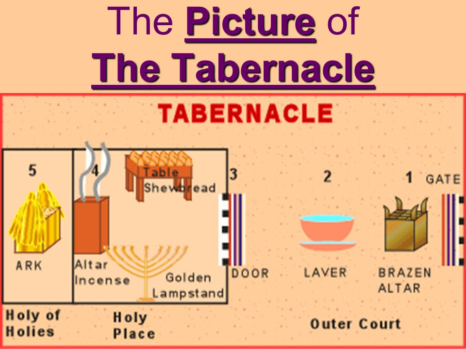 Picture The Tabernacle The Picture of The Tabernacle