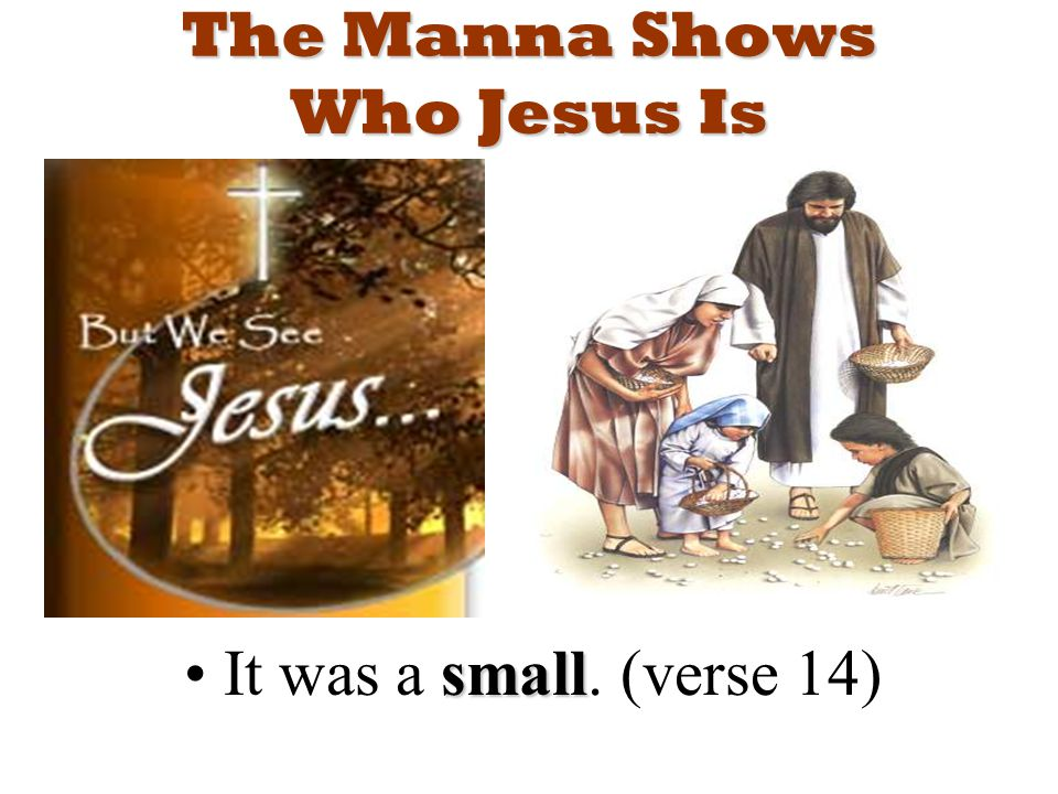 The Manna Shows Who Jesus Is smallIt was a small. (verse 14)