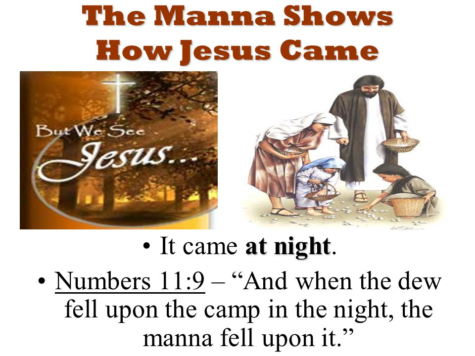 The Manna Shows How Jesus Came at nightIt came at night.