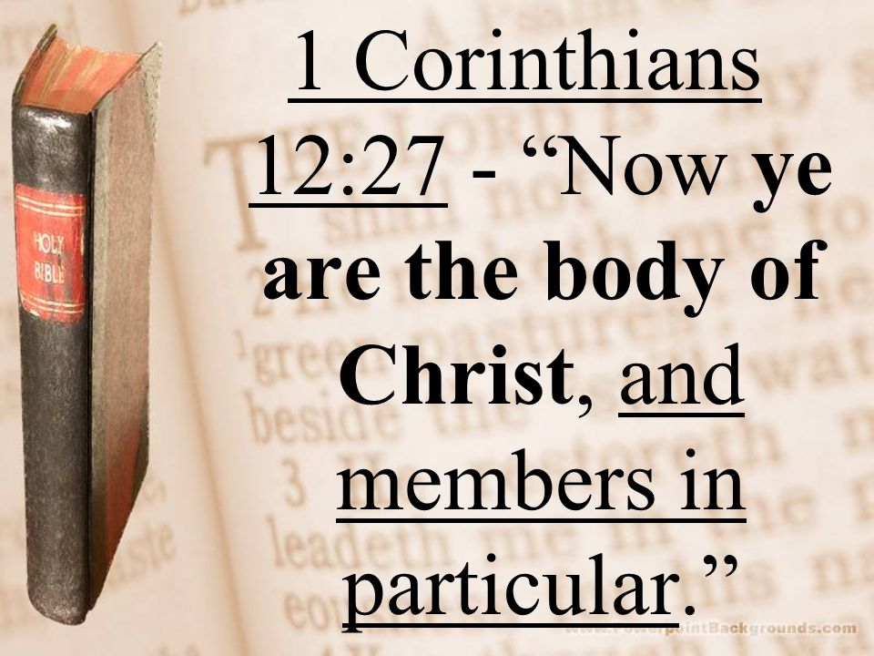 1 Corinthians 12:27 - Now ye are the body of Christ, and members in particular.