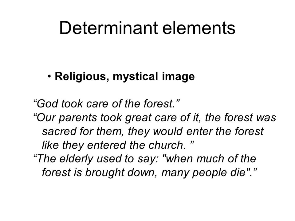 Determinant elements Religious, mystical image God took care of the forest. Our parents took great care of it, the forest was sacred for them, they would enter the forest like they entered the church.