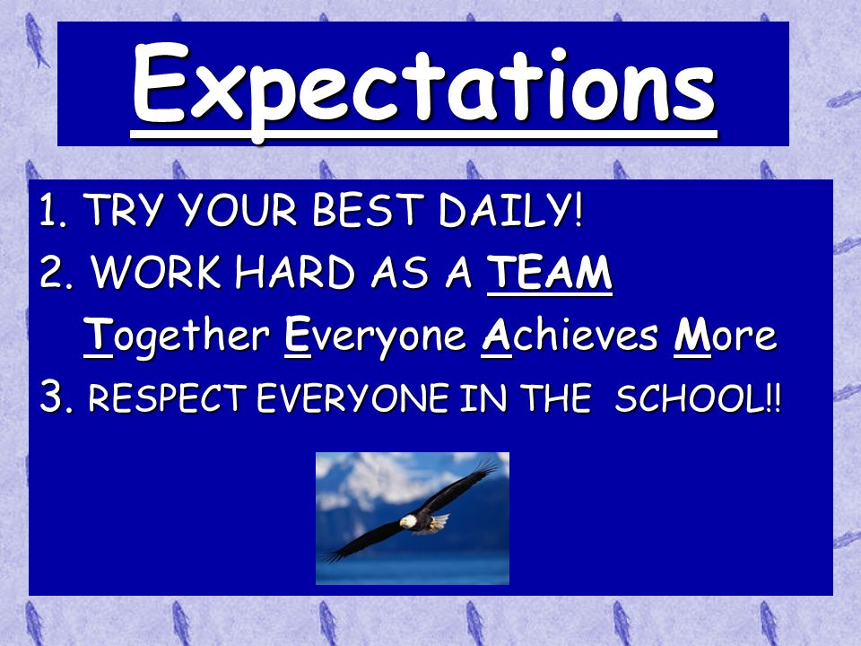 Blue Ribbon School!!!  We were selected for the Blue Ribbon School for Top Academic School in Wisconsin 2009!  Students need to keep striving for ex