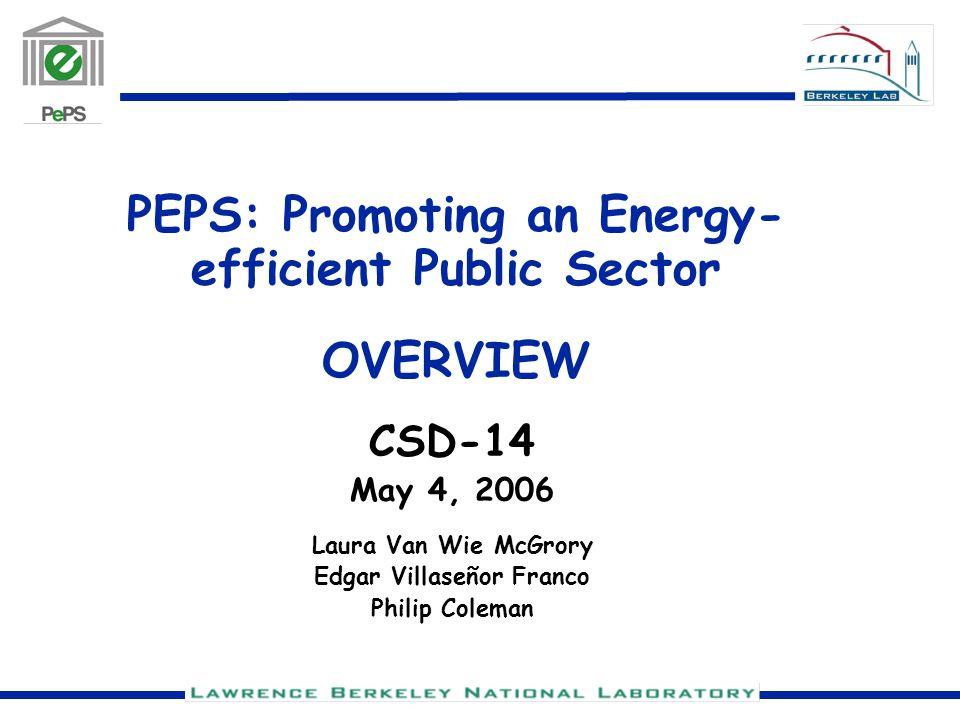 PEPS: Promoting an Energy- efficient Public Sector OVERVIEW CSD-14 May 4, 2006 Laura Van Wie McGrory Edgar Villaseñor Franco Philip Coleman