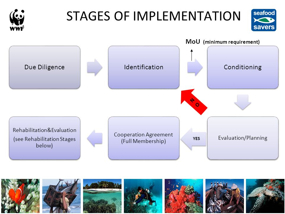 Due DiligenceIdentificationConditioning Evaluation/Planning YES Cooperation Agreement (Full Membership) Rehabilitation&Evaluation (see Rehabilitation Stages below) STAGES OF IMPLEMENTATION MoU (minimum requirement) NO NO