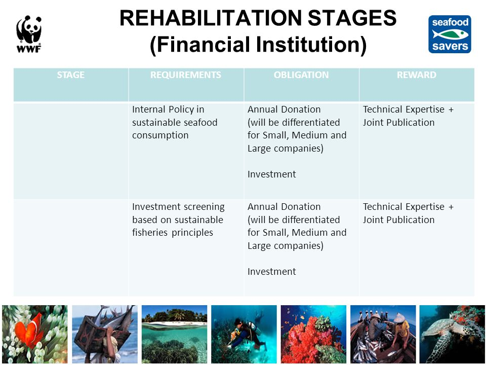 REHABILITATION STAGES (Financial Institution) STAGEREQUIREMENTSOBLIGATIONREWARD Internal Policy in sustainable seafood consumption Annual Donation (will be differentiated for Small, Medium and Large companies) Investment Technical Expertise + Joint Publication Investment screening based on sustainable fisheries principles Annual Donation (will be differentiated for Small, Medium and Large companies) Investment Technical Expertise + Joint Publication