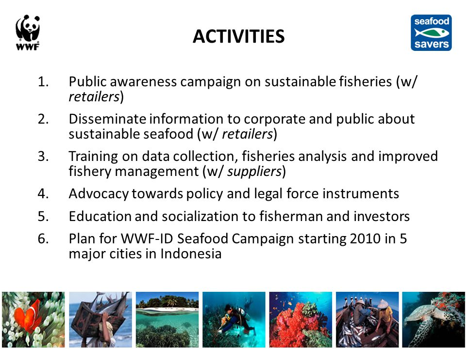 ACTIVITIES 1.Public awareness campaign on sustainable fisheries (w/ retailers) 2.Disseminate information to corporate and public about sustainable seafood (w/ retailers) 3.Training on data collection, fisheries analysis and improved fishery management (w/ suppliers) 4.Advocacy towards policy and legal force instruments 5.Education and socialization to fisherman and investors 6.Plan for WWF-ID Seafood Campaign starting 2010 in 5 major cities in Indonesia