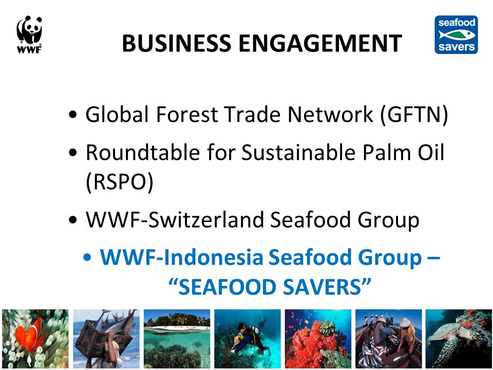 BUSINESS ENGAGEMENT Global Forest Trade Network (GFTN) Roundtable for Sustainable Palm Oil (RSPO) WWF-Switzerland Seafood Group WWF-Indonesia Seafood Group – SEAFOOD SAVERS