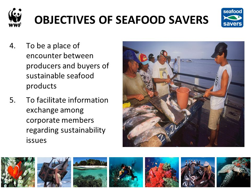 OBJECTIVES OF SEAFOOD SAVERS 4.To be a place of encounter between producers and buyers of sustainable seafood products 5.To facilitate information exchange among corporate members regarding sustainability issues