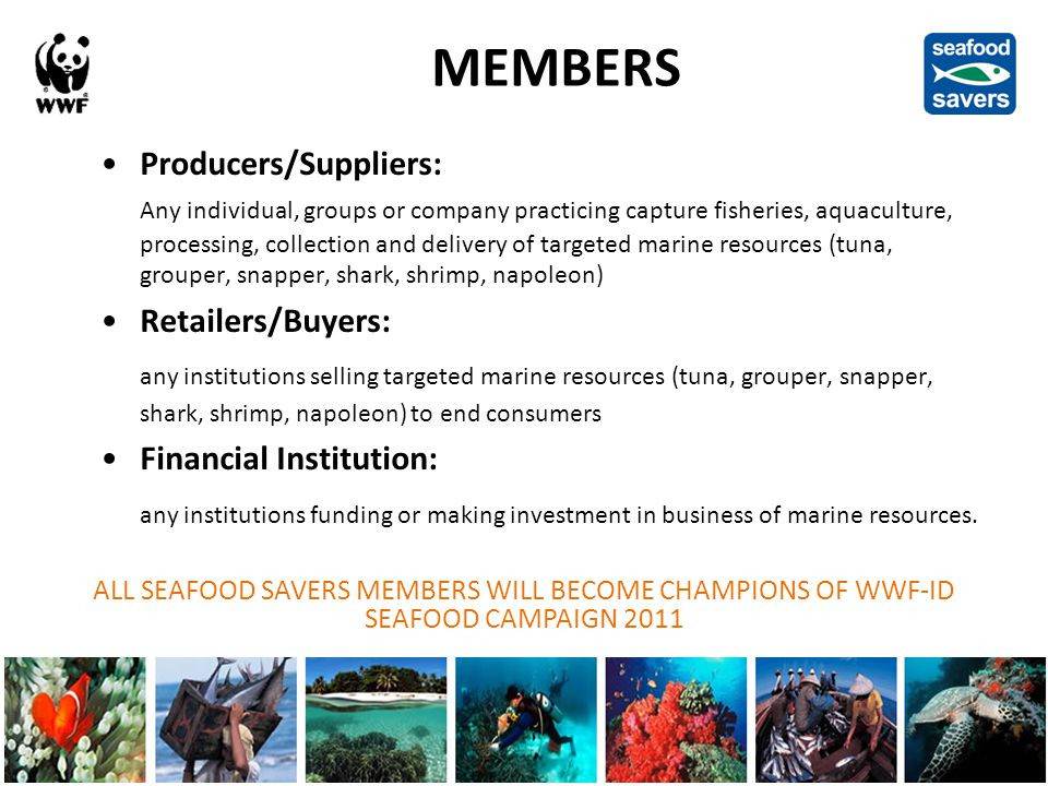 MEMBERS Producers/Suppliers: Any individual, groups or company practicing capture fisheries, aquaculture, processing, collection and delivery of targeted marine resources (tuna, grouper, snapper, shark, shrimp, napoleon) Criteria: 1)Is a legal entity, business or at least a group.