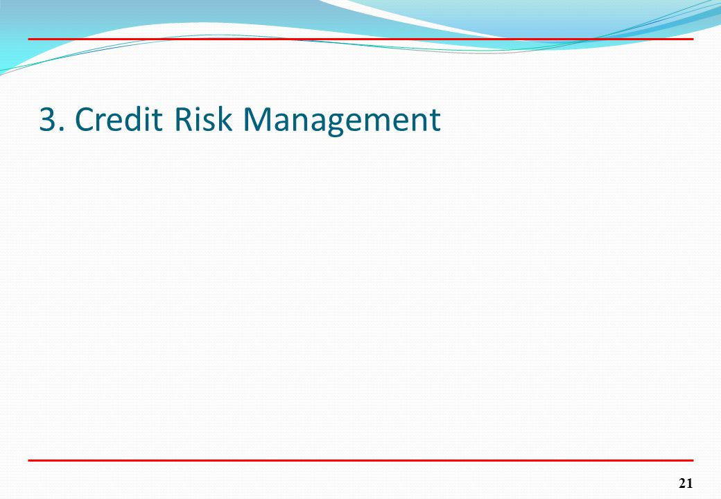 21 3. Credit Risk Management