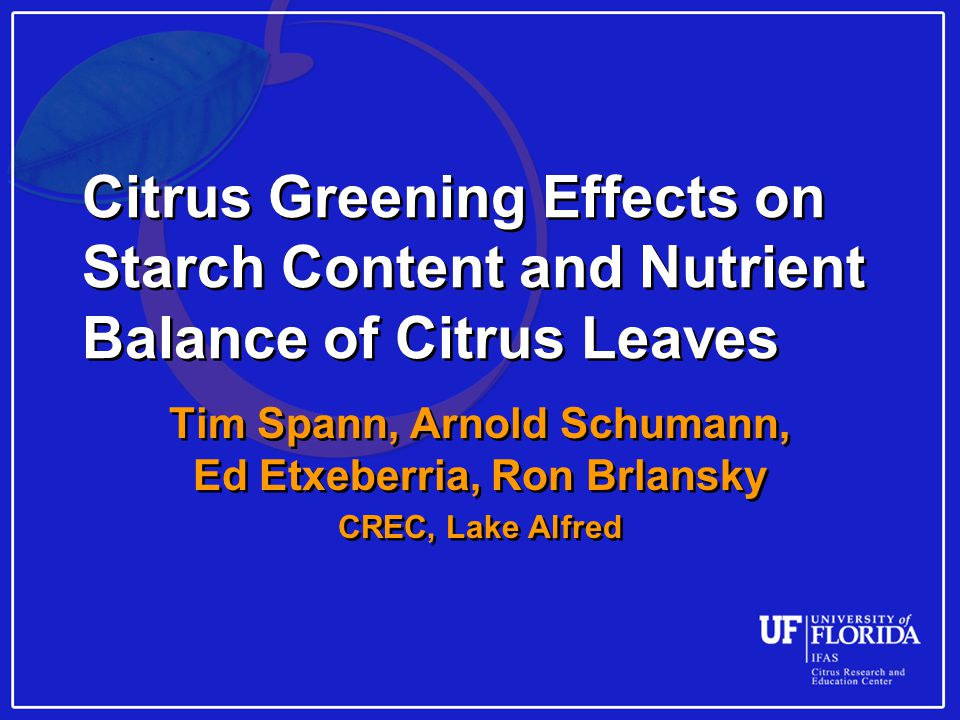 Citrus Greening Effects on Starch Content and Nutrient Balance of Citrus Leaves Tim Spann, Arnold Schumann, Ed Etxeberria, Ron Brlansky CREC, Lake Alfred Tim Spann, Arnold Schumann, Ed Etxeberria, Ron Brlansky CREC, Lake Alfred