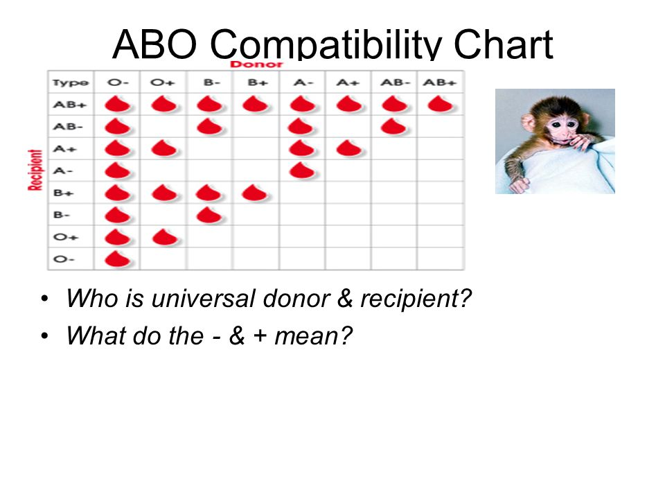 RBC & Plasma Transfusions-Compatibility O- universal donor, AB+ universal recipient Blood Transfusions