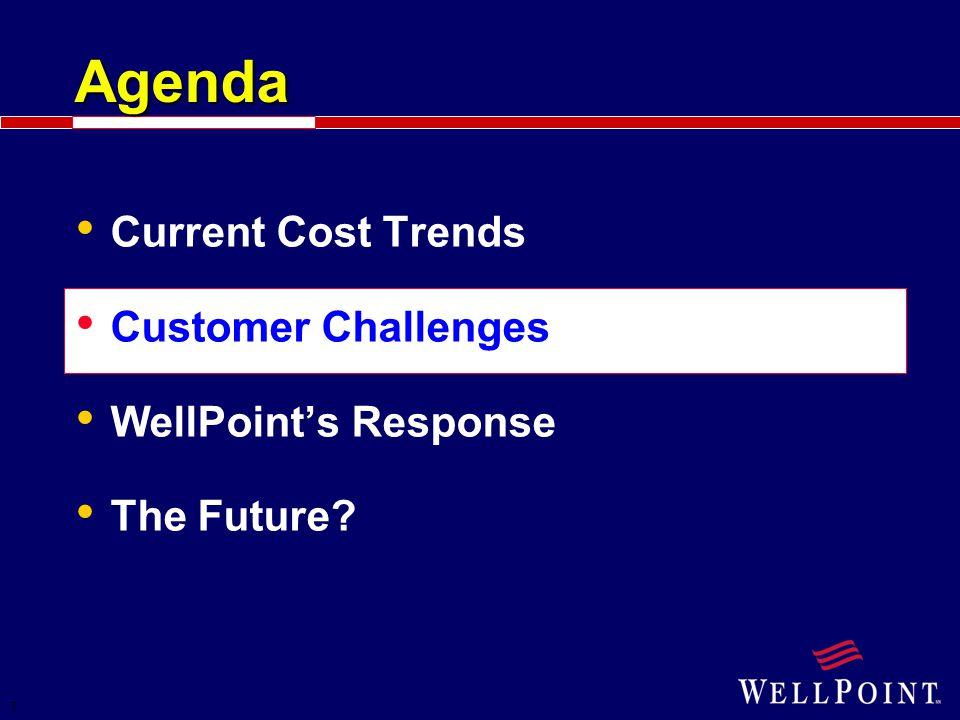 7 Agenda Customer Challenges WellPoint's Response The Future?
