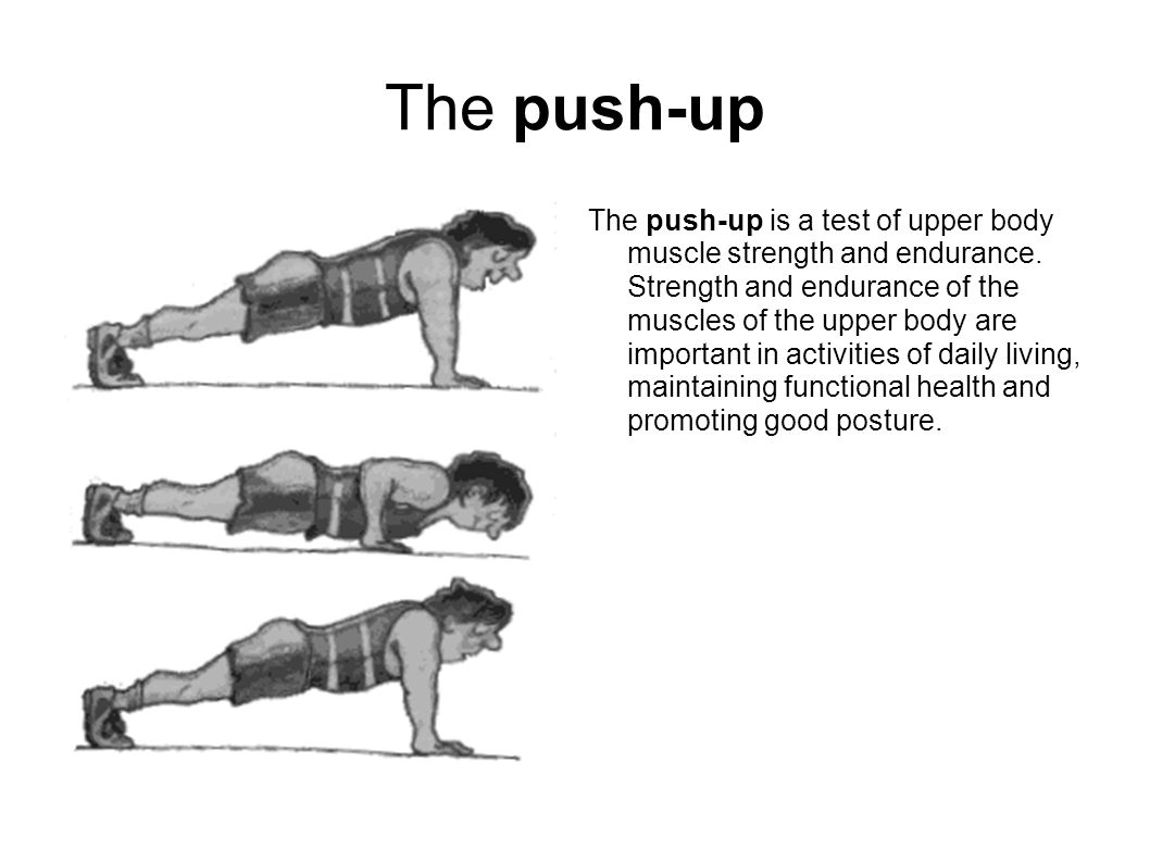 The push-up The push-up is a test of upper body muscle strength and endurance.