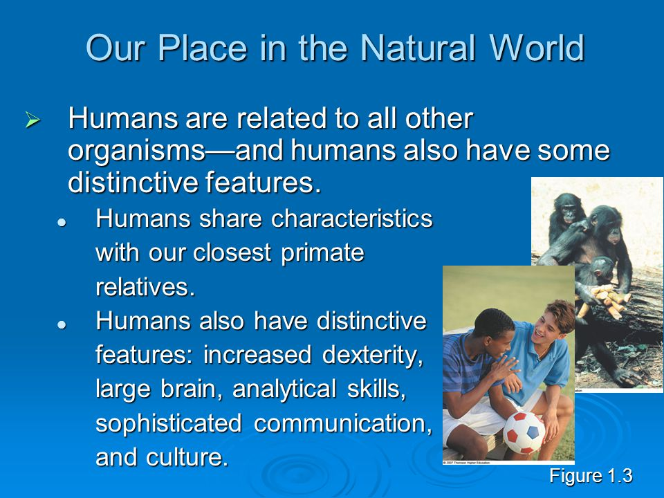 Our Place in the Natural World  Humans are related to all other organisms—and humans also have some distinctive features.
