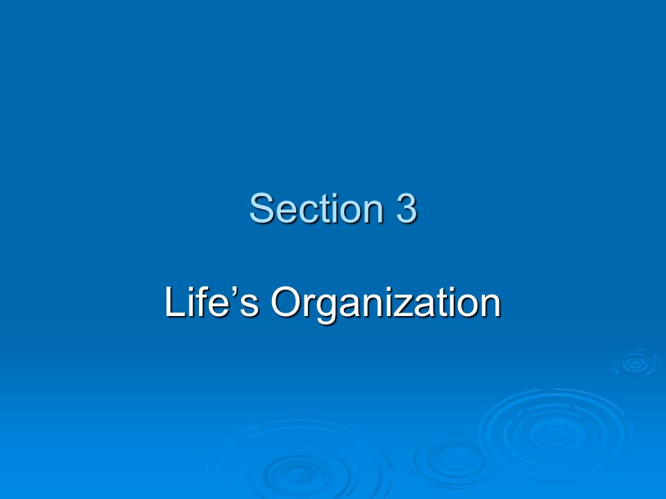 Section 3 Life's Organization