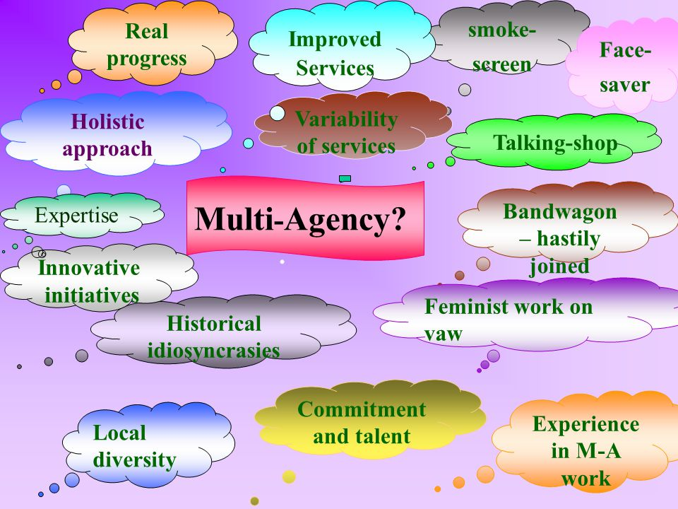 Historical idiosyncrasies Commitment and talent Holistic approach Local diversity Bandwagon – hastily joined Real progress smoke- screen Face- saver Variability of services Feminist work on vaw Experience in M-A work Improved Services Innovative initiatives Multi - Agency.